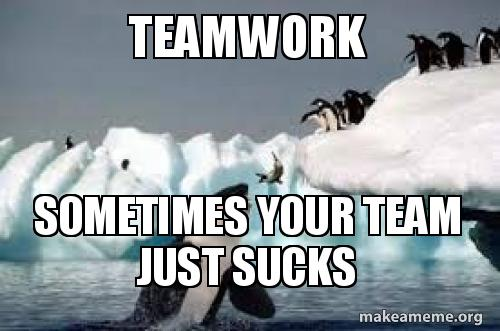 Teamwork Sometimes Your